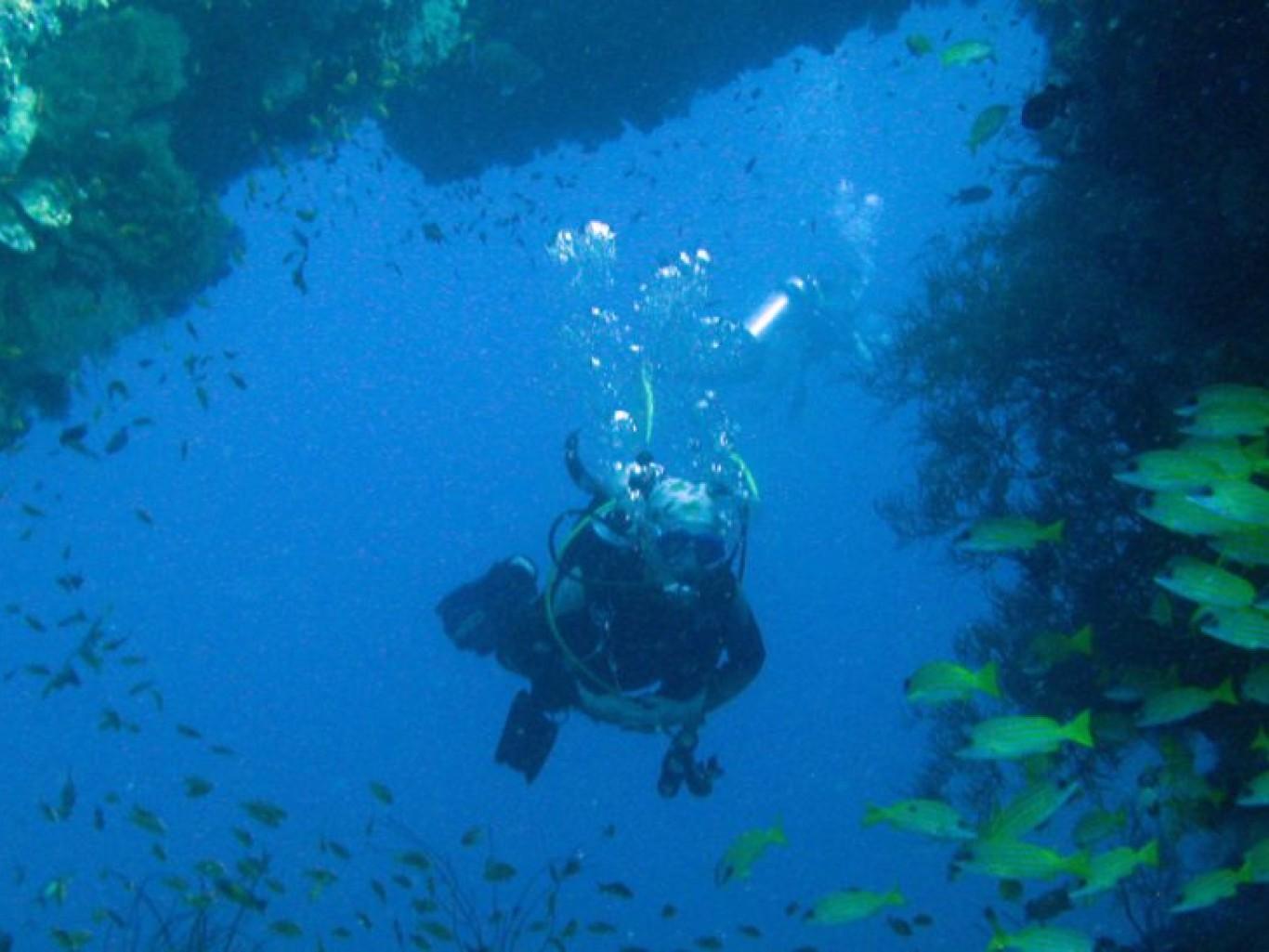 Gitte maldiverne